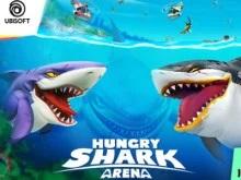 Aç Köpekbalığı Arenası