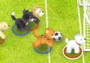 Evcil Hayvan Futbolu