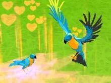 Papağan Simülatörü